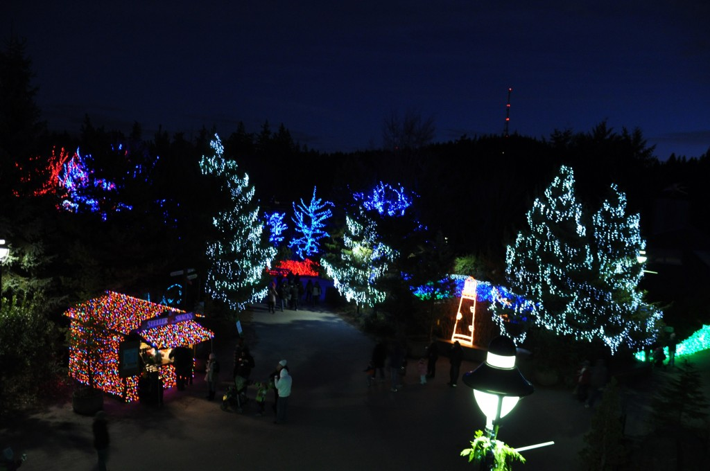 zoolights 2010 oregon zoo portland, or