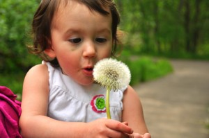 Baby blowing flower