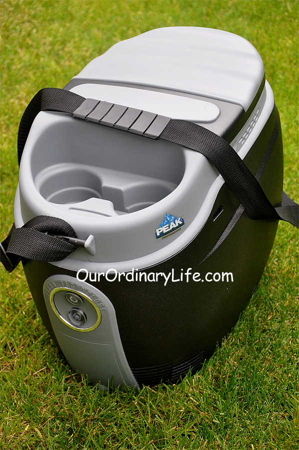 Peak 12 volt Portable Warmer Cooler