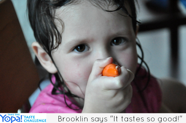 brooklin yogurt