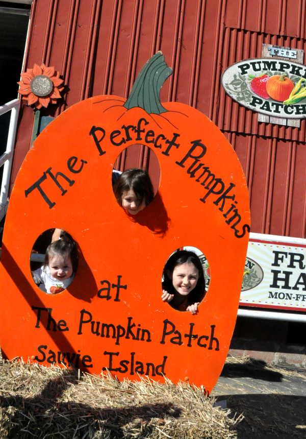 family pumpkin patch 2013