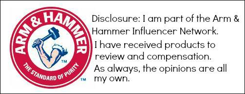 arm and hammer bloggers