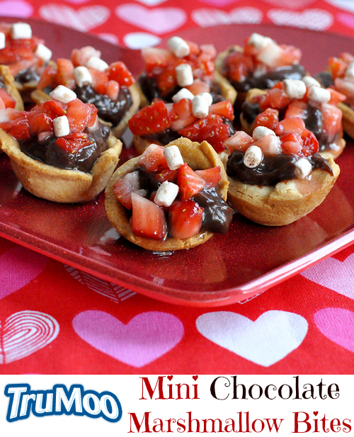 TruMoo Chocolate Marshmallow Mousse Tarts (5)