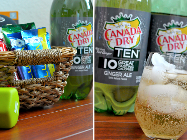 Canada Dry Ginger Ale 10 Ten (3)