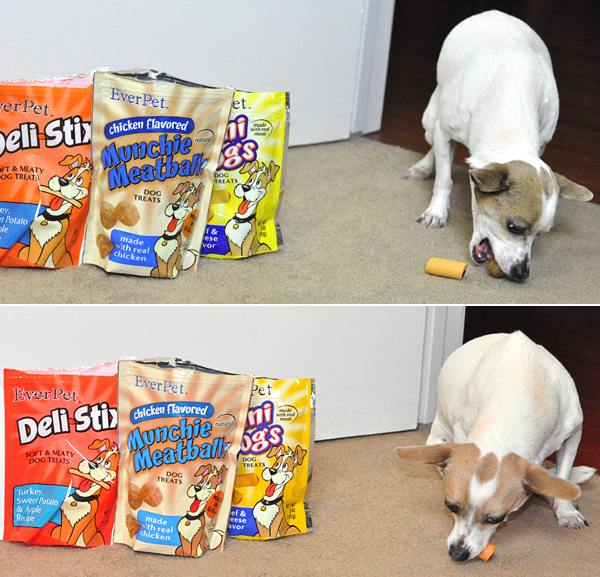 Dollar general Everpet dog food treats (1)