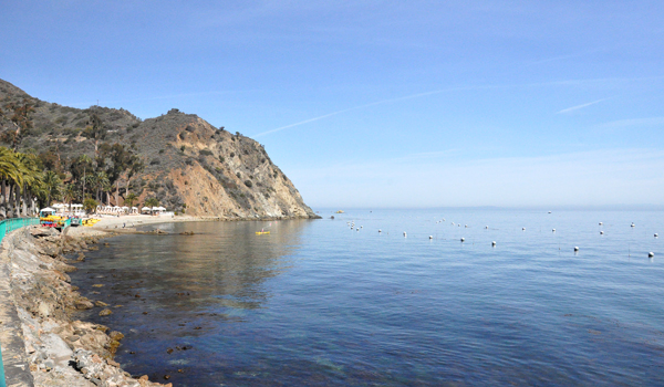 Catalina Island Kayaks Descanso Beach (5)
