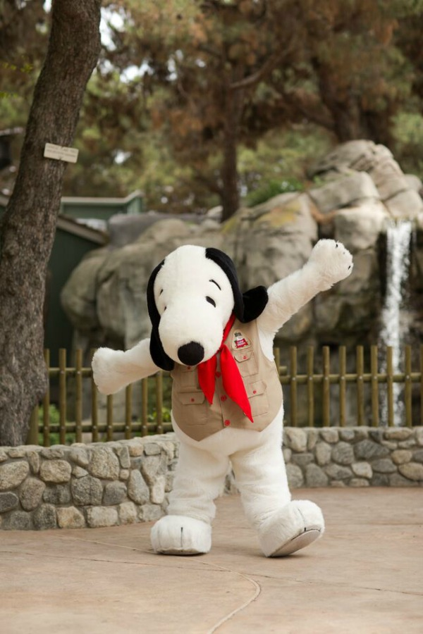a critique of the snoopy ice show produced by knotts berry farm The show has undergone significant changes throughout its history, with the creation of sesame street, producers and writers of a childrens television show used, for the first time, educational goals and a curriculum to shape its content.