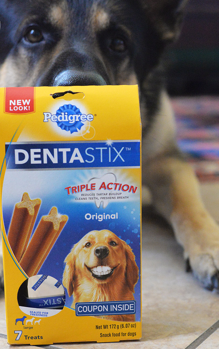 DENTAStix chew snack for dogs clean teeth