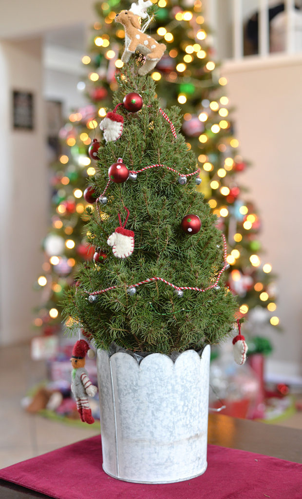 jackson perkins holiday christmas tree small spaces