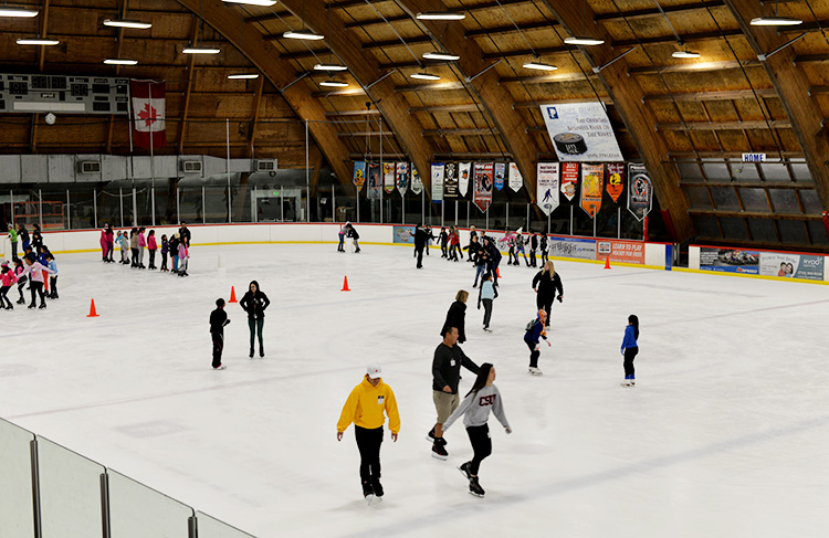 the rink downtown anaheim, ca ice skating