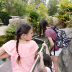 San Diego Zoo Family Event for el AMERICANO