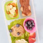 Teddy Bear Themed Lunchbox Idea For Kids