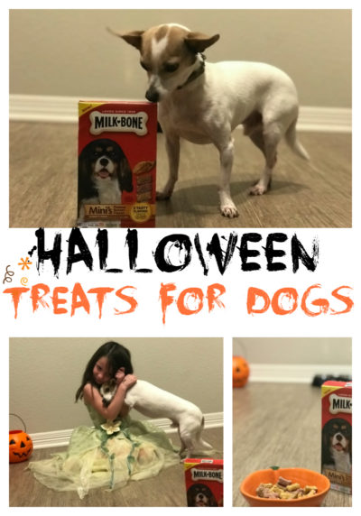 halloween treat ideas for dogs